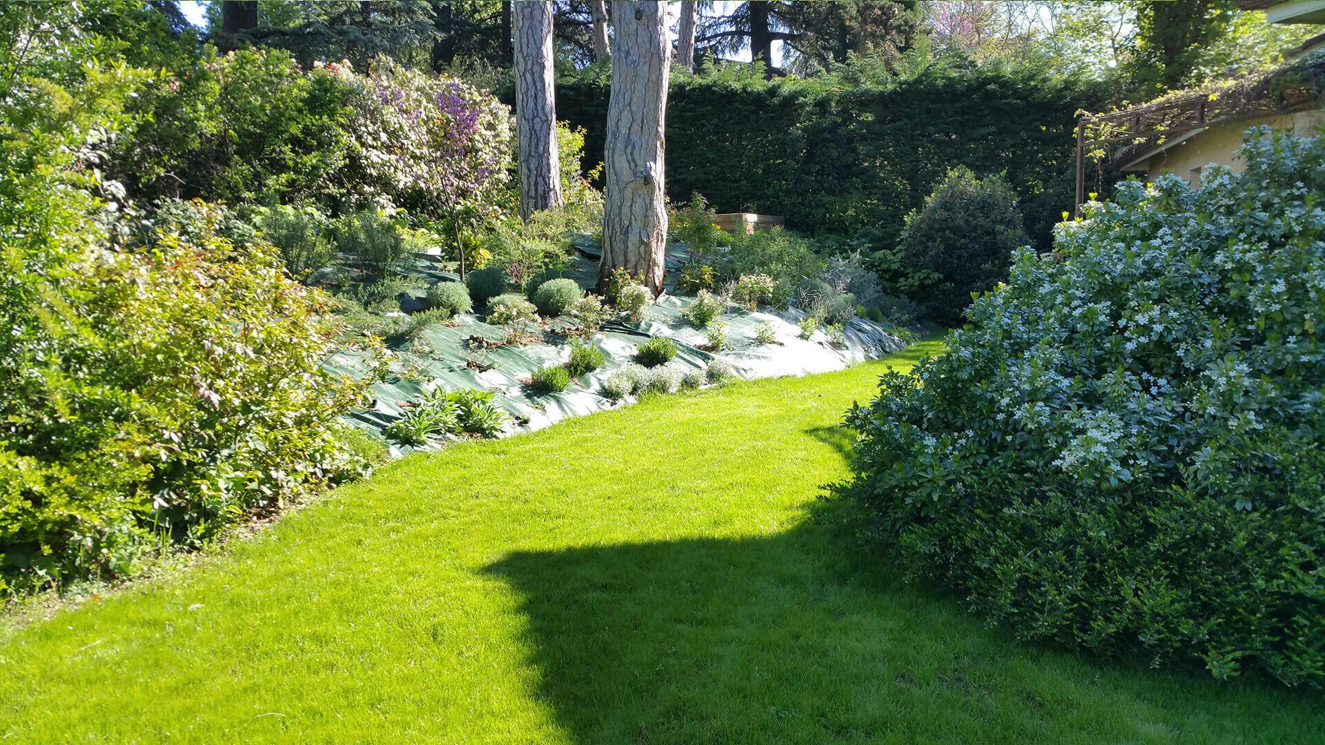 Spécialistes des espaces verts, Entretien de parcs et jardins